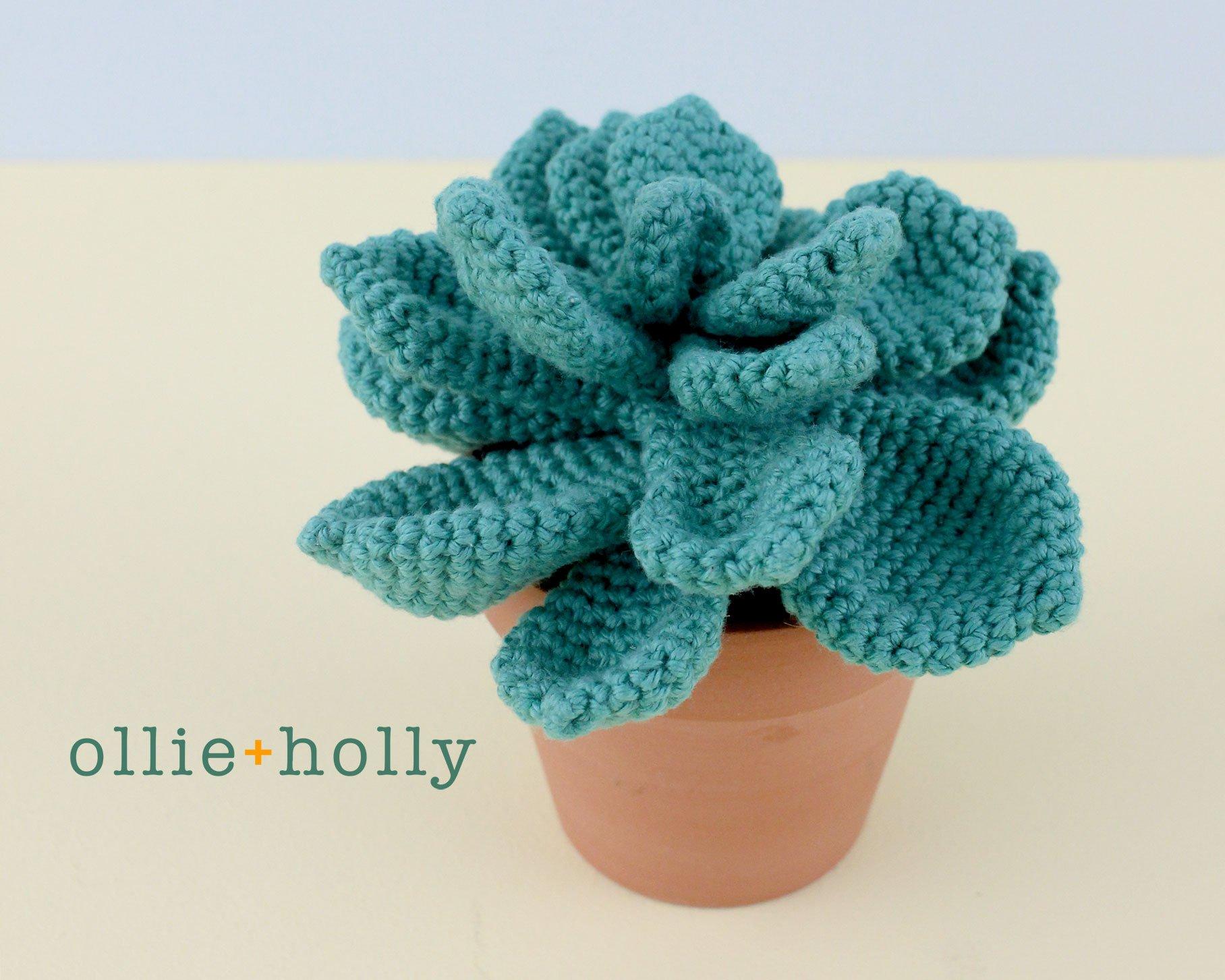 Crochet DIY: Succulent Plants Project | Crochet succulent, Crochet ... | 1453x1816