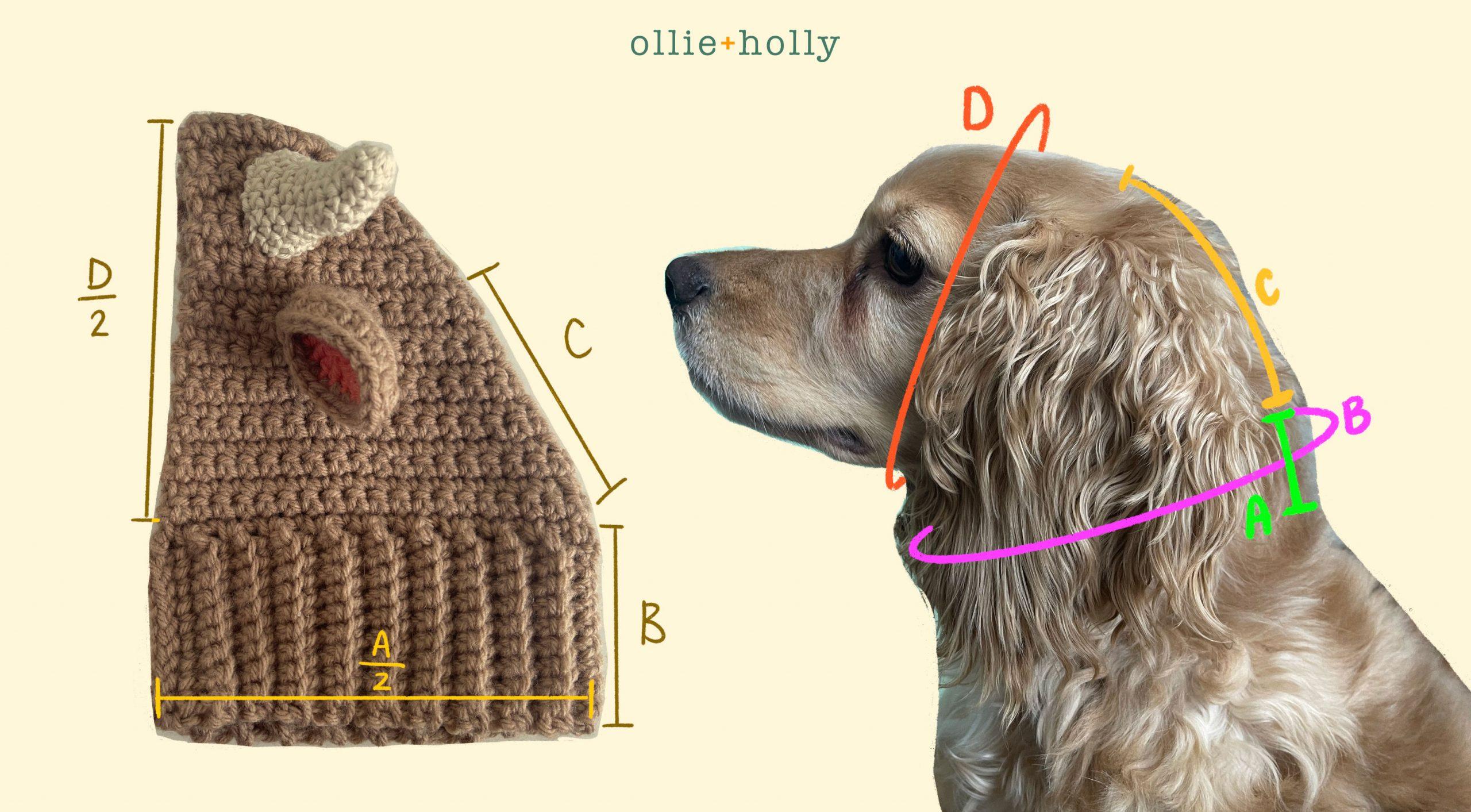 How To Crochet A Basic Dog Snood Pattern Measurement Formula